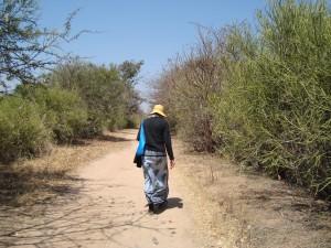 Jessie walking to schooljpeg